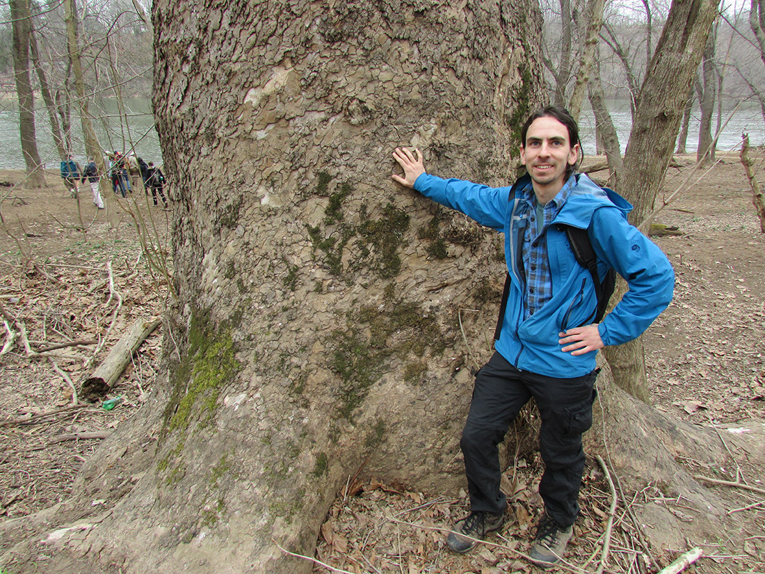 Gabriel Popkin standing in front of Maryland's largest tree.