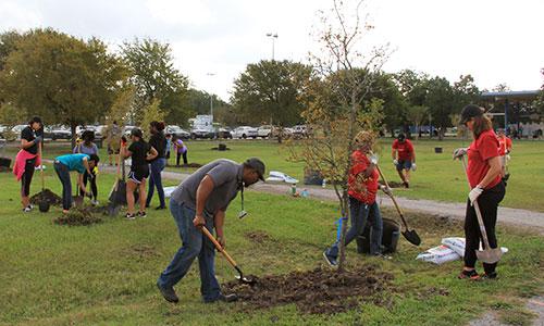 bank of america volunteers planting trees