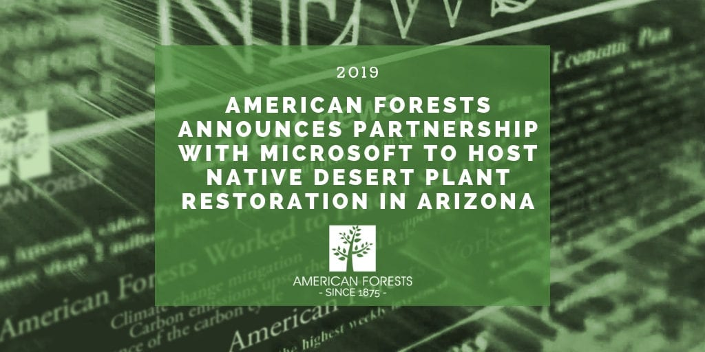 American Forests Announces Partnership with Microsoft to Host Native Desert Plant Restoration in Arizona 2