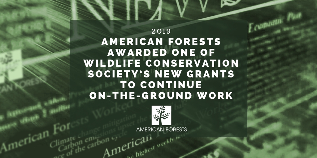 American Forests Awarded One of Wildlife Conservation Society's New Grants to Continue On-The-Ground Work 2
