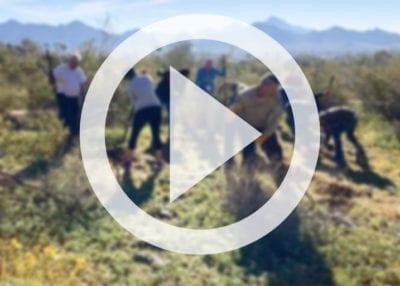 desert restoration photo american forests 2019 2