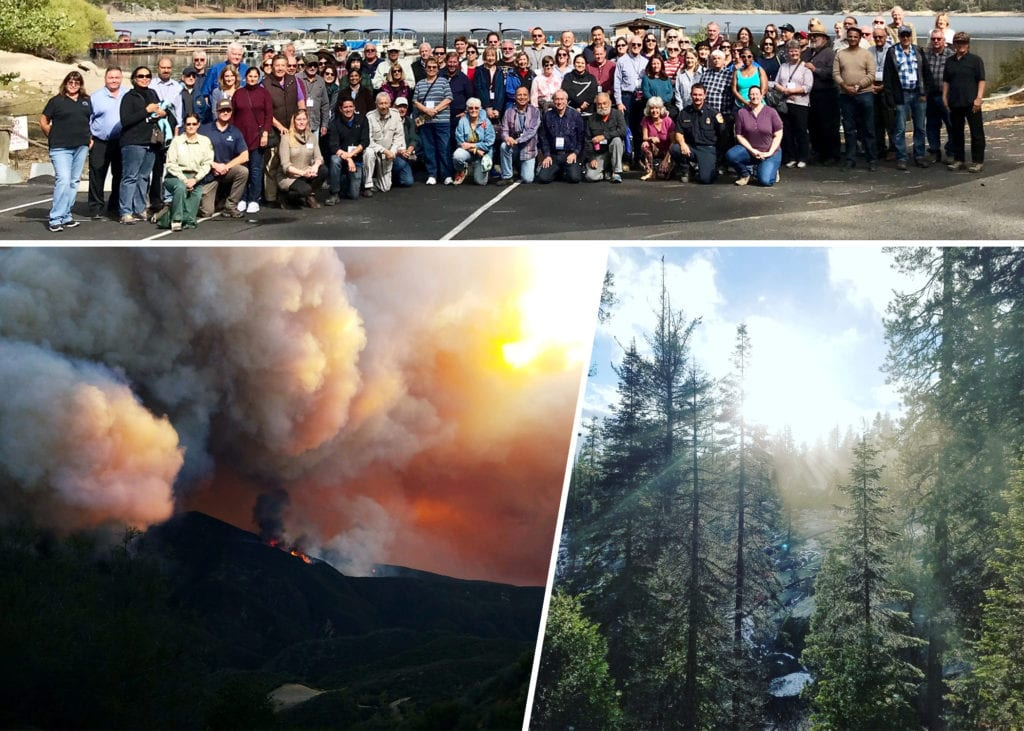 american forests california initiative reforest fire forest trees regrowth coservation