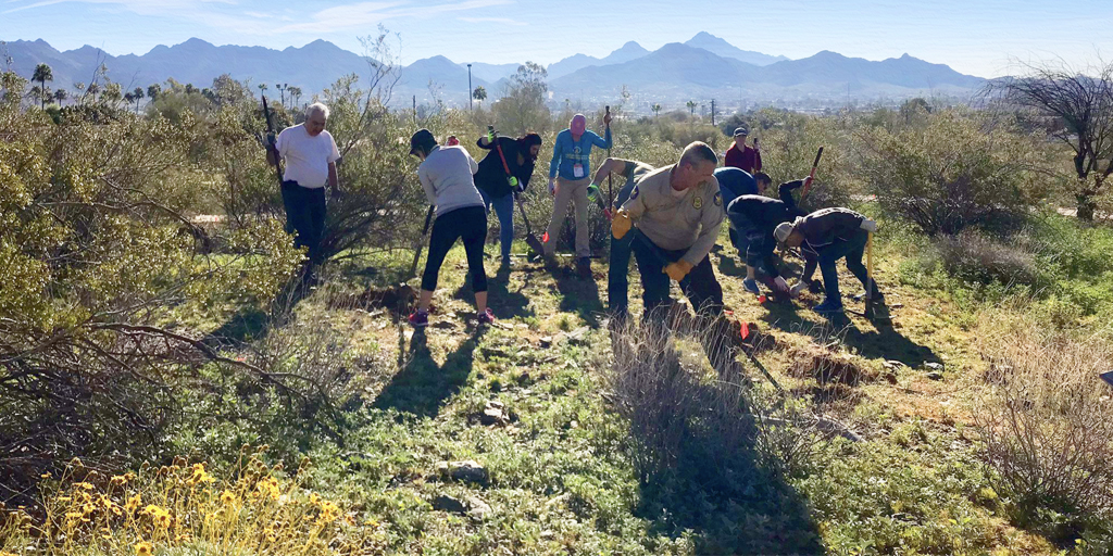 desert restoration photo american forests 2019