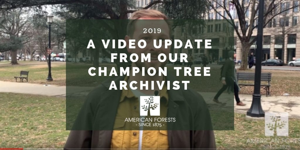 American Forests Video Update from Champion Tree Archivist and Photographer Brian Kelley