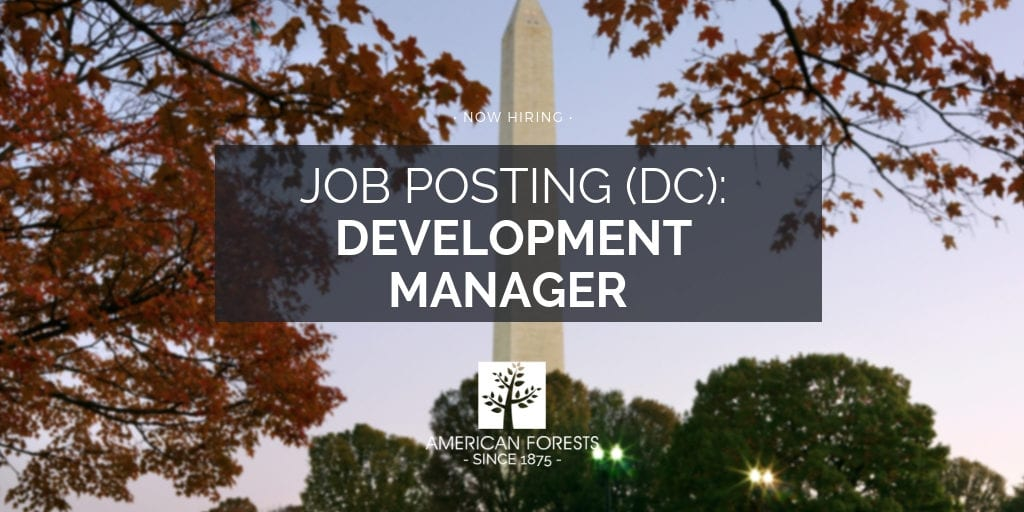 job posting development manager american forests 2
