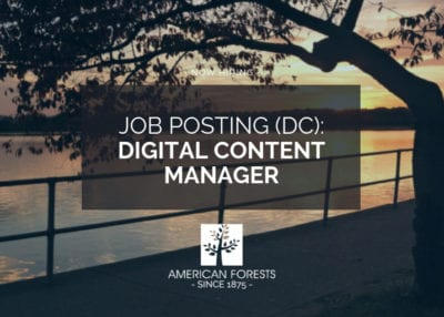 Digital Content Manager jobs washington dc 2019 now hiring