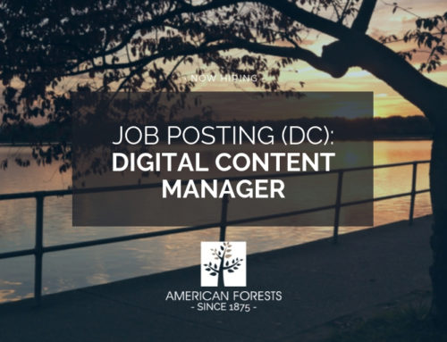 Digital Content Manager, Communications and Marketing