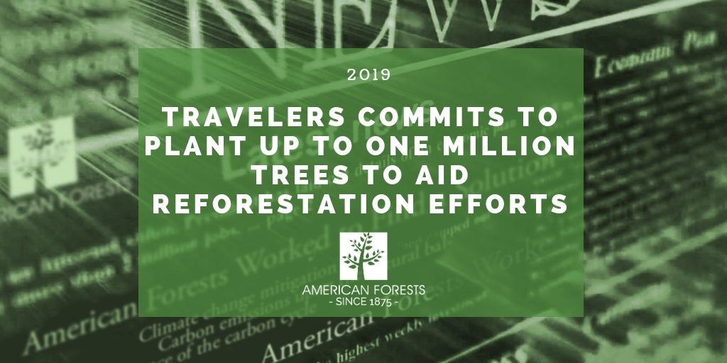 Travelers Commits to Plant up to One Million Trees to Aid Reforestation Efforts (1)