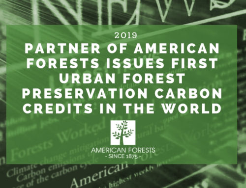 Partner of American Forests Issues First Urban Forest Preservation Carbon Credits in the World