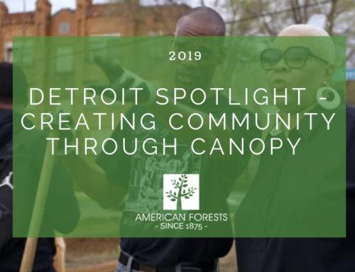 Detroit Spotlight — Creating Community through Canopy