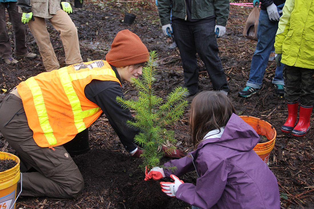 Two young volunteers help plant 200 trees at the 3-acre Ballinger Open Space site in Shoreline, Wash.