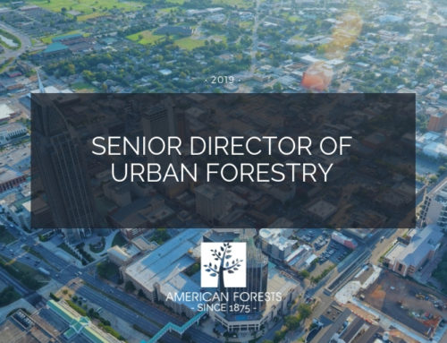 Job Posting: Senior Director of Urban Forestry