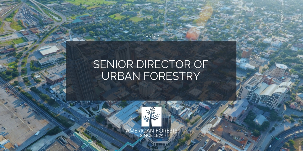 job posting senior director urban forestry manager washington dc conservation forests planning science