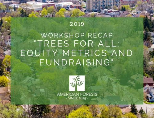 "Workshop Recap – ""Trees for All: Equity Metrics and Fundraising"""