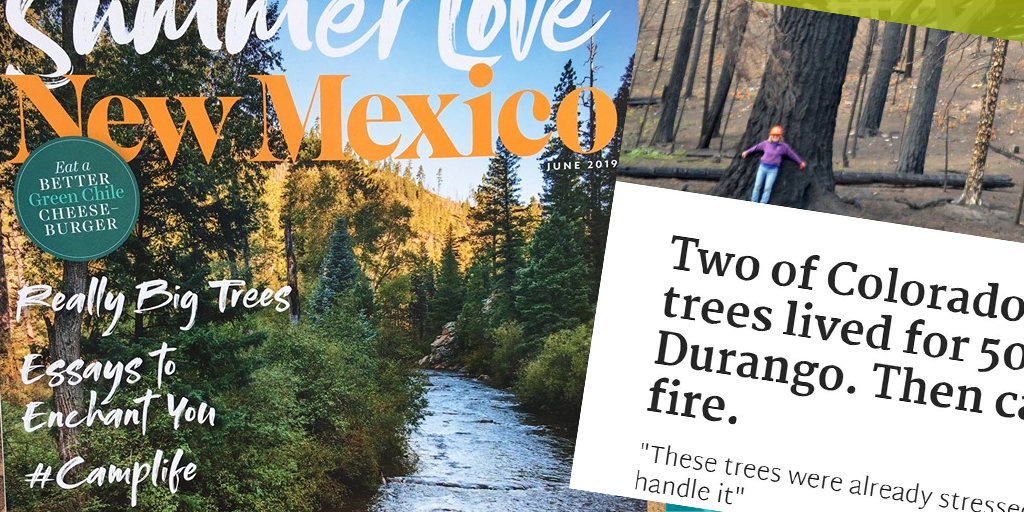 America's Legendary Trees - in the Press - American Forests