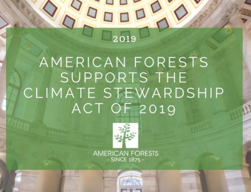 American Forests Supports the Climate Stewardship Act of 2019
