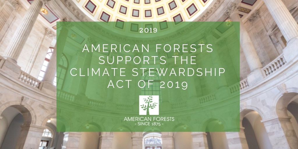 Action Alert Save Urban Forests Now American Forests >> Email Signup American Forests