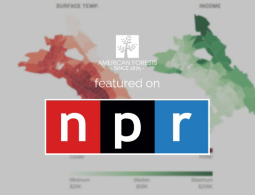 American Forests Featured on NPR's All Things Considered