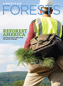American Forests Fall 2019 Cover