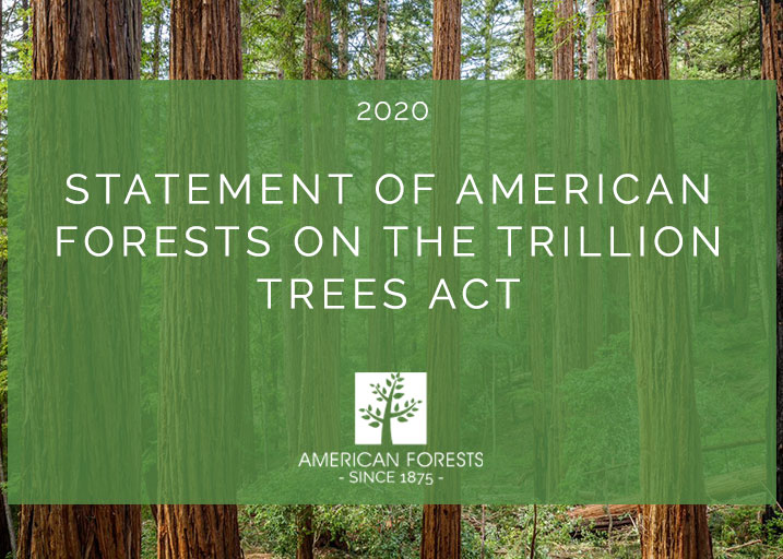 Statement of American Forests on the Trillion Trees Act