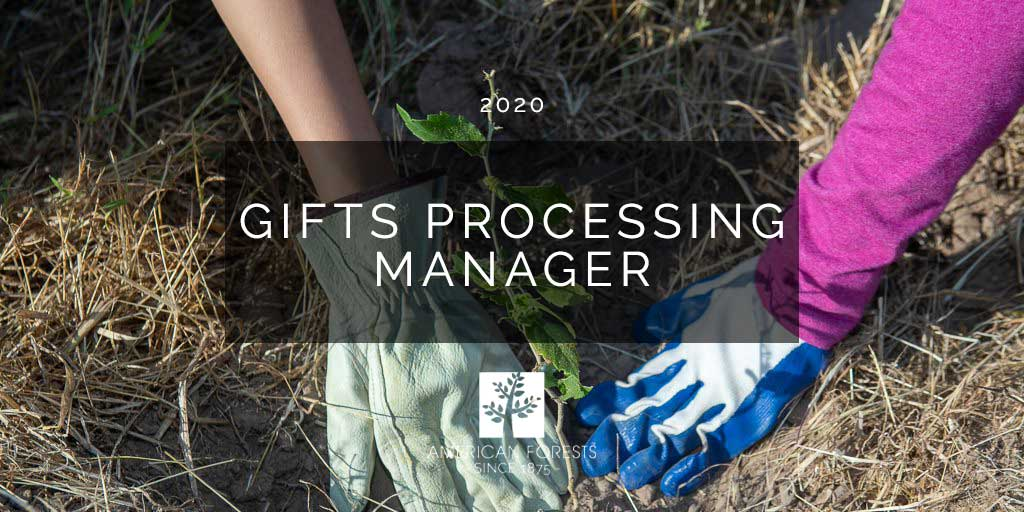 Gifts Processing Manager