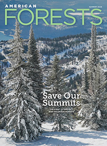 American Forests Summer Cover