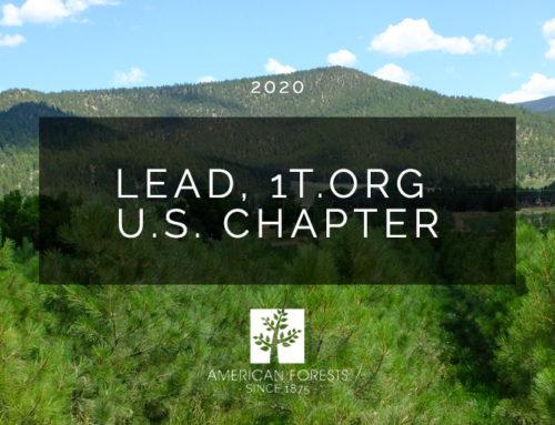 Job Posting: Lead, 1t.org US Chapter