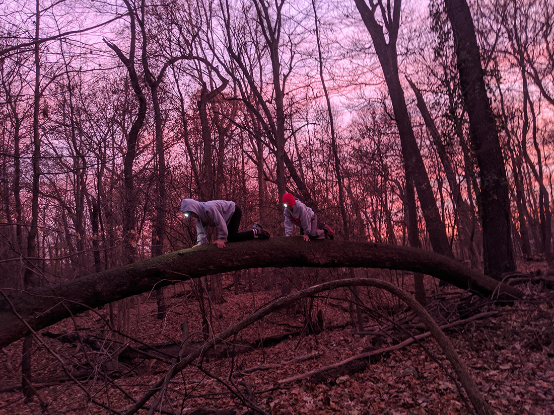 Ian Leahy's nephews play among the trees in the woods behind his childhood home in Royal Oak, Mich.