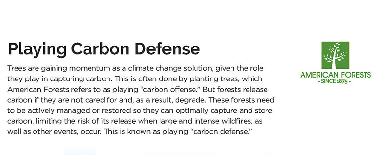 Carbon Defense