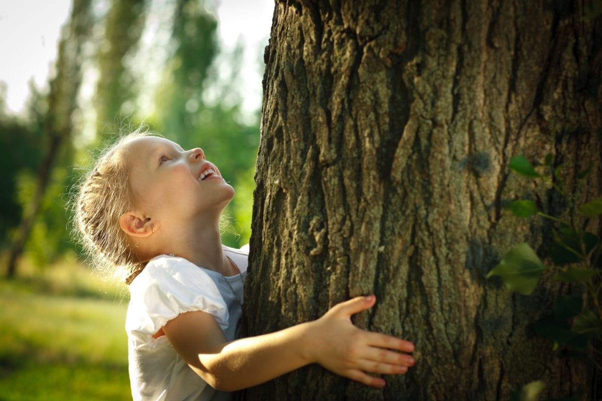 A little girl hugs a tree.