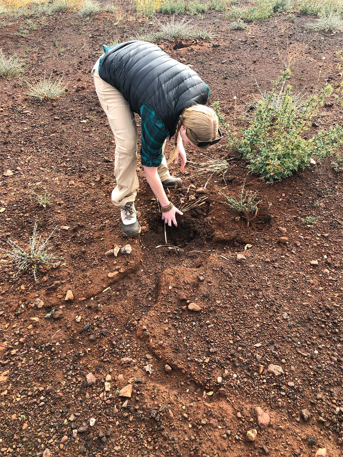 American Forests California State Director Brittany Dyer tests soil quality at a planting site American Forests is reforesting after the Camp Fire.