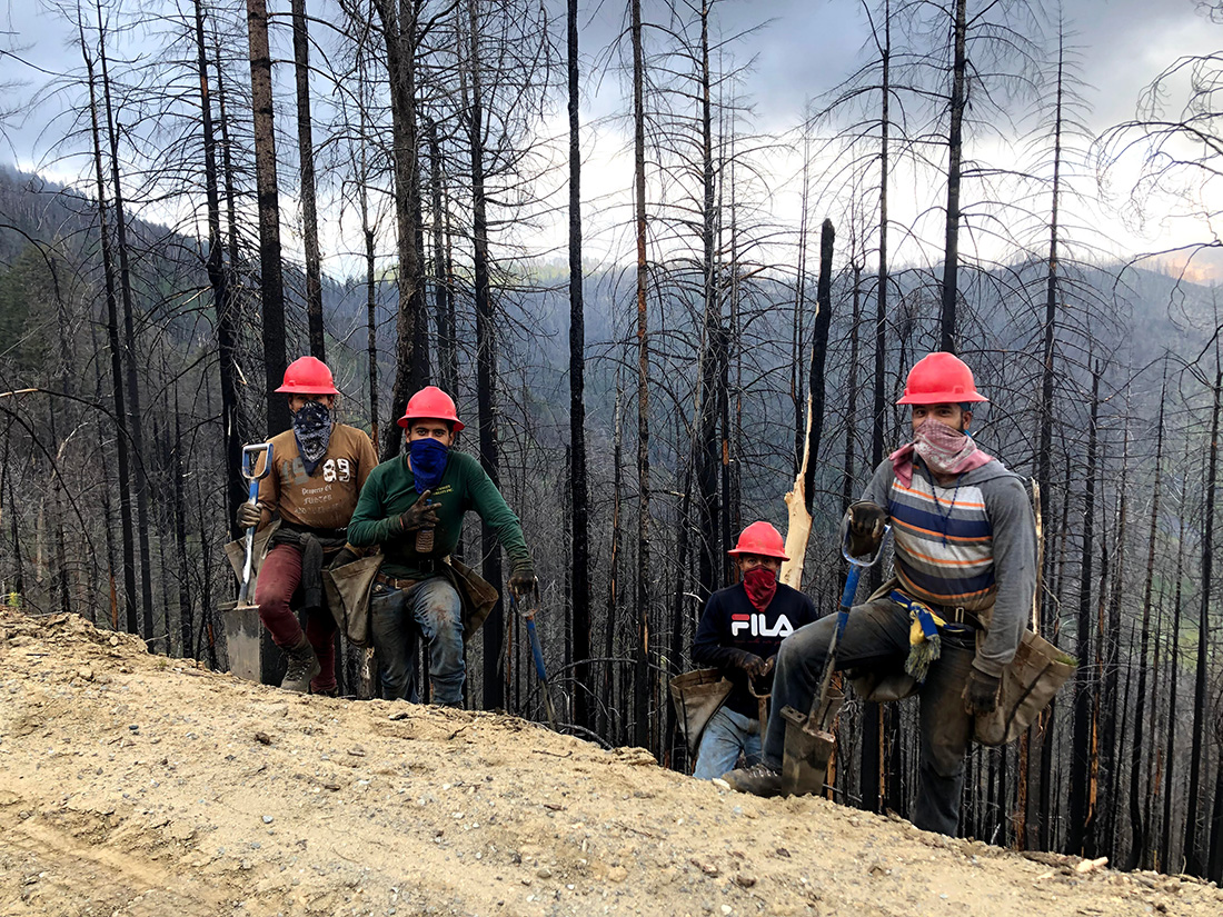Tree planters planting in the burn scar left by the Carr Fire, 80 miles north of Paradise in Northern California. The Carr Fire burned 230,000 acres in the sweltering summer of 2018 — just months before the Camp Fire.