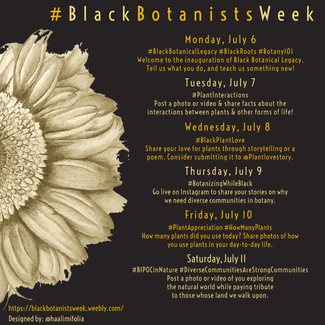 #BlackBotanistsWeek, a social media campaign, helped promote, encourage and create a safe space for BIPOC to connect and share information.