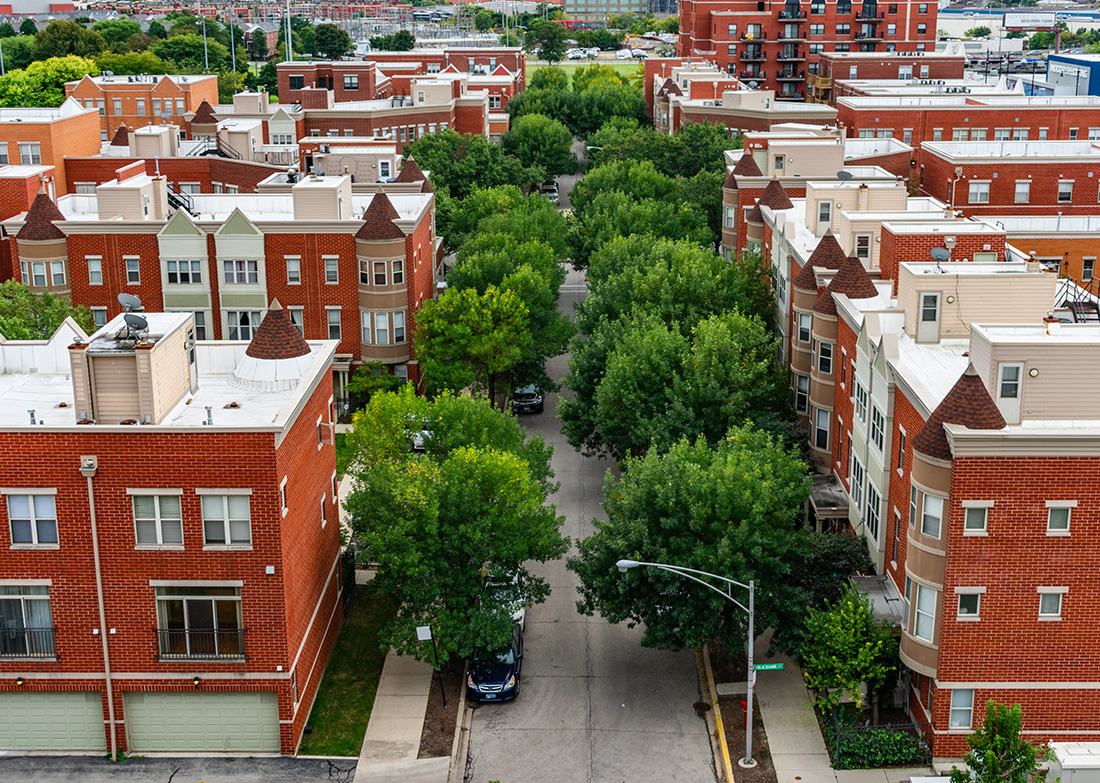 Trees in the U.S. absorb 17.4 million tons of air pollutants, preventing 670,000 cases of asthma and other acute respiratory symptoms annually.