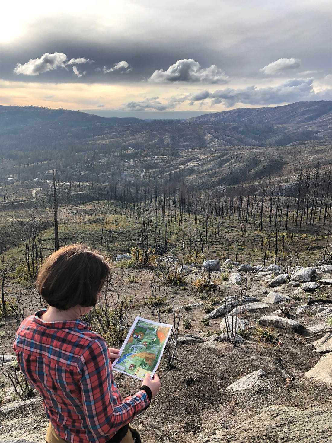 Wolfy Rougle, of the Butte County Resource Conservation District, stands above the Concow Basin, surveying draft plans for three innovative reforestation trials to regrow forests after the Camp Fire.