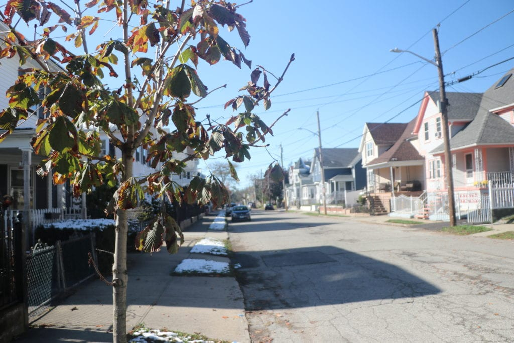 Neighborhood street showing few trees.