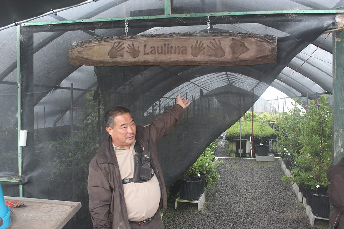 Baron Horiuchi describing the concept of laulima, or many hands. He credits the success of reforestation efforts to the dedicated volunteers and staff working together to return native plants to Hakalau Forest.