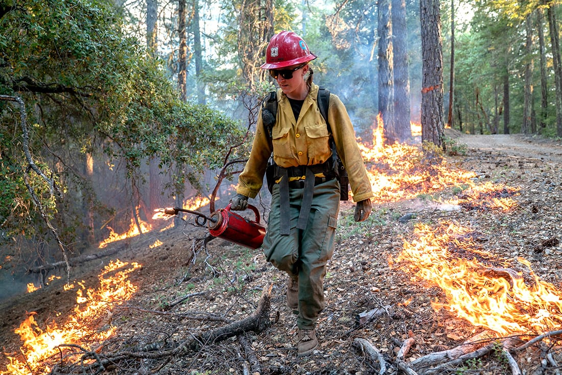 """Laura Spellman, a """"hot shot"""" firefighter, uses a drip torch to burn vegetation as part of efforts to contain a 2018 wildfire in Mendocino National Forest, Calif."""
