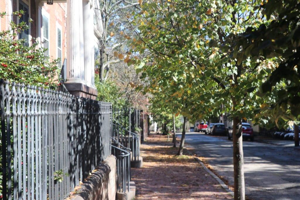 Rhode Island neighborhood with a high Tree Equity Score