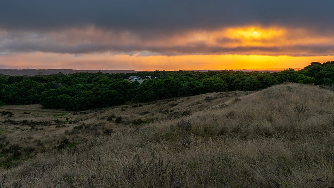 Looking down slope toward the station at Hakalau Forest National Wildlife Refuge as the sun rises over the ocean.