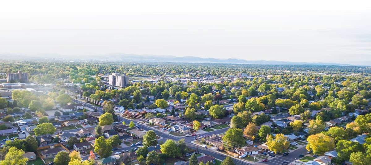 Aerial view of city with lush trees