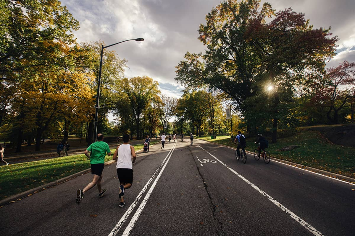 People run and bike on a paved road through a city park.