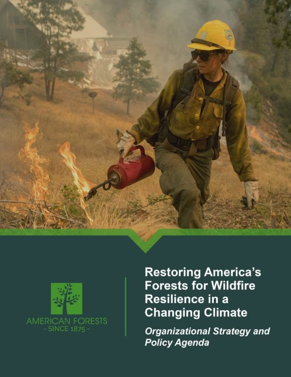 Cover of the Wildfire Resiliency Strategy report