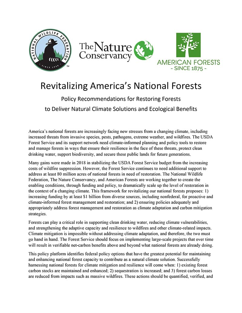 Revitalizing America's National Forests cover