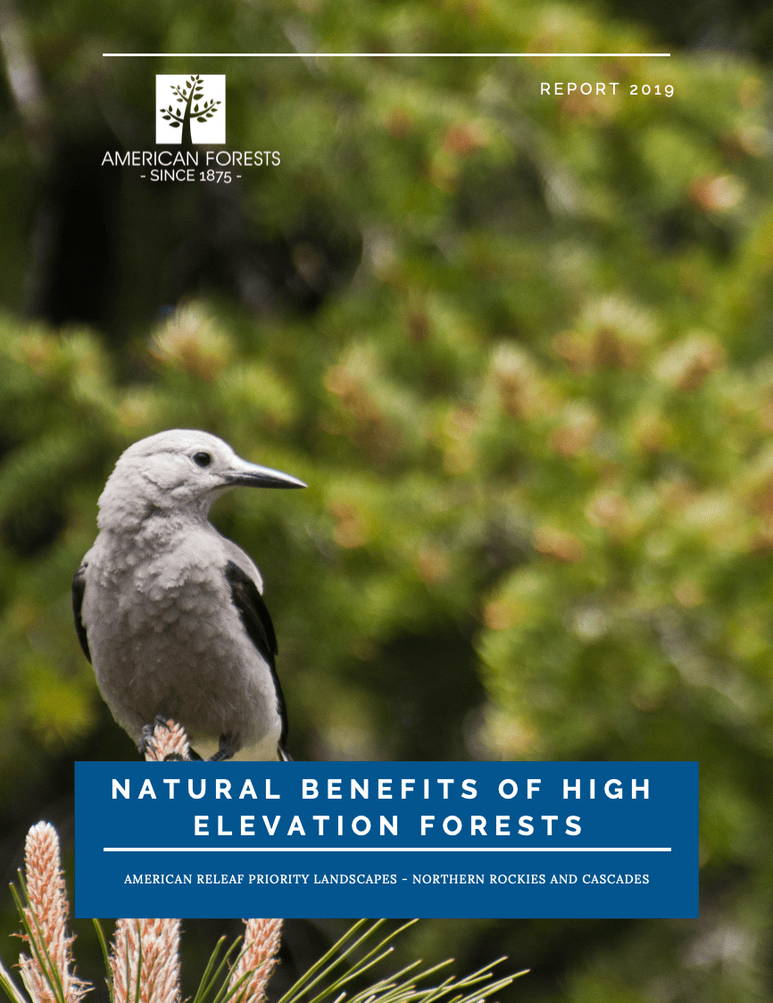 Natural Benefits of High-Elevation Forests brief cover