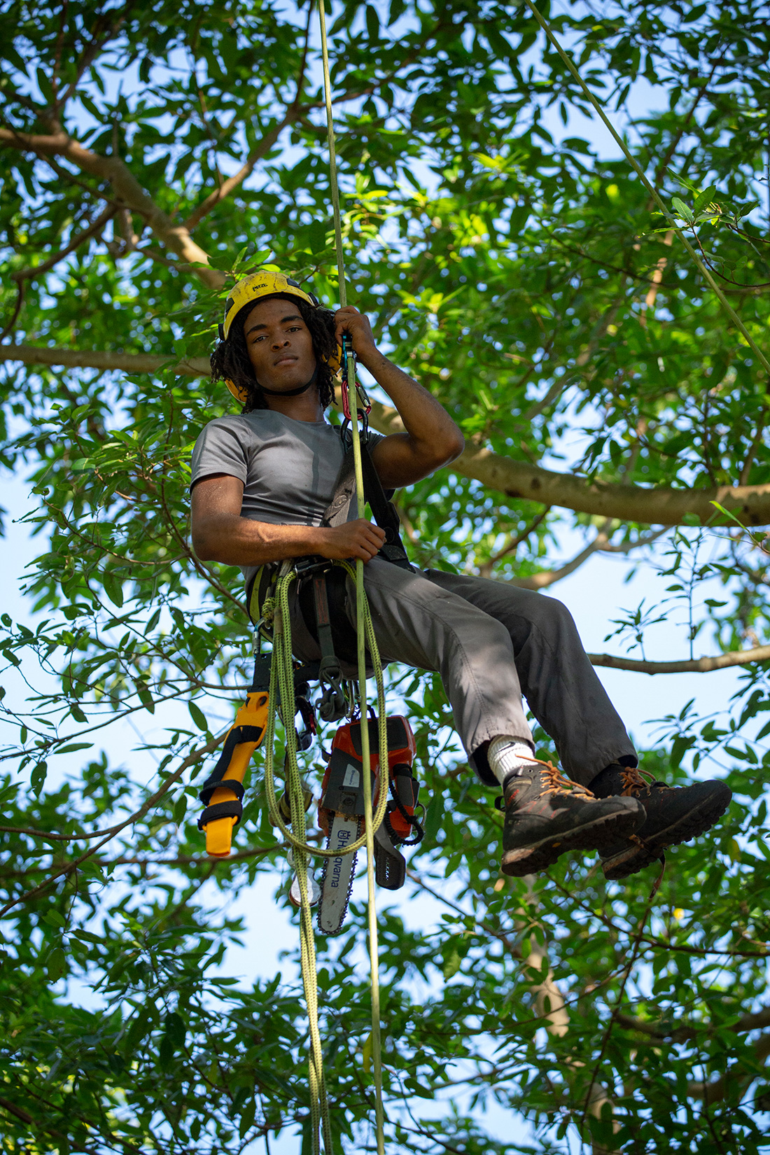 Andressohn works for True Tree Service in Miami, where he is a production arborist, trained to safely ascend and descend trees in order to care for them. Our cities need many more like him. Urban forestry is expected to see a 10% increase in job openings for entry-level positions by 2028.