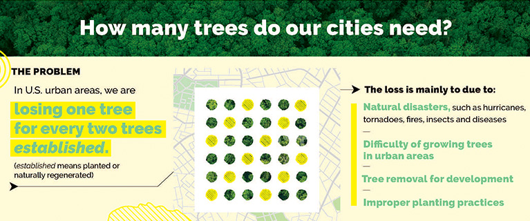 A new study reveals how to advance Tree Equity by planting 31.4 million trees.